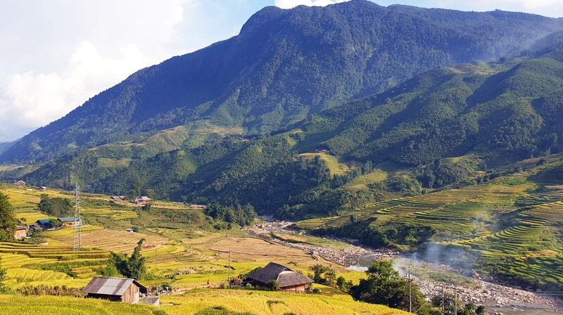 Sapa: Trên những ruộng bậc thang đẹp tuyệt vời, bà con vùng cao hối hả vào vụ thu hoạch lúa mùa